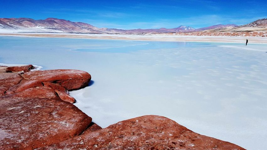 Salt Flats Red Rocks  Piedras Rojas Chile High Altitude Landscape Travel Destinations Outdoors Coulour Of Life