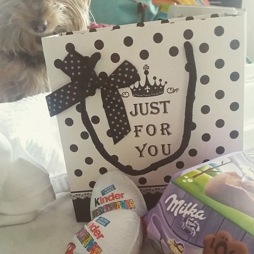 The Easter Bunny has arrived. Presents Easterbunny Happyeaster Love Family Yorkieinthebackground Myfamily Gonnamisseverybody 6DaysToGo