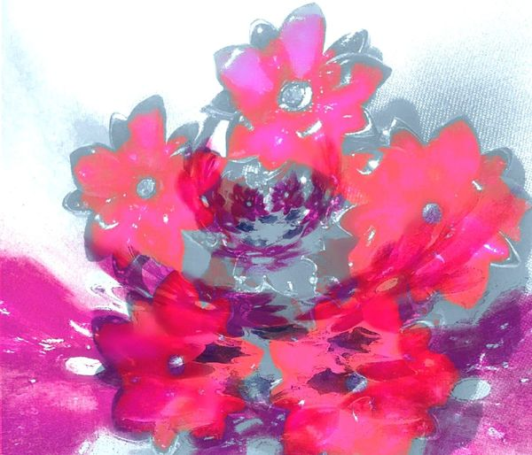 Poinsettia Flower Poinsetta Flowers Poinsettia Poinsettias Poinsettiaporn Poinsettiaflower Poinsettiaflowers Flowerpower Flowerporn Flowerpower🌸 Flowerpower! Double Exposure Doubleexposure Super Imposed Superimposed Grandma's  Pin Broach  I Miss Her Grandma Grandma's Heirloom Missing Her ♥ Missing Her Momento Precious Things