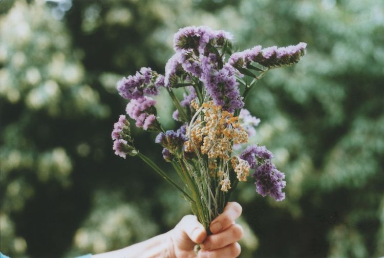 35mm Film Analogue Photography Film Photography Flower Flowering Plant Plant Vulnerability  Fragility Freshness Focus On Foreground Hand Human Hand Holding Nature One Person Day Human Body Part Close-up Purple Beauty In Nature Growth Outdoors Real People Flower Head Finger Bouquet Flower Arrangement