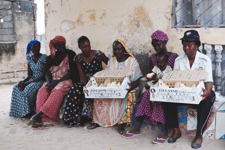 Women Who Inspire You women are taking initiatives to survive Micro Crédit Banque  de la Volaille Débrouille Africa Senegal