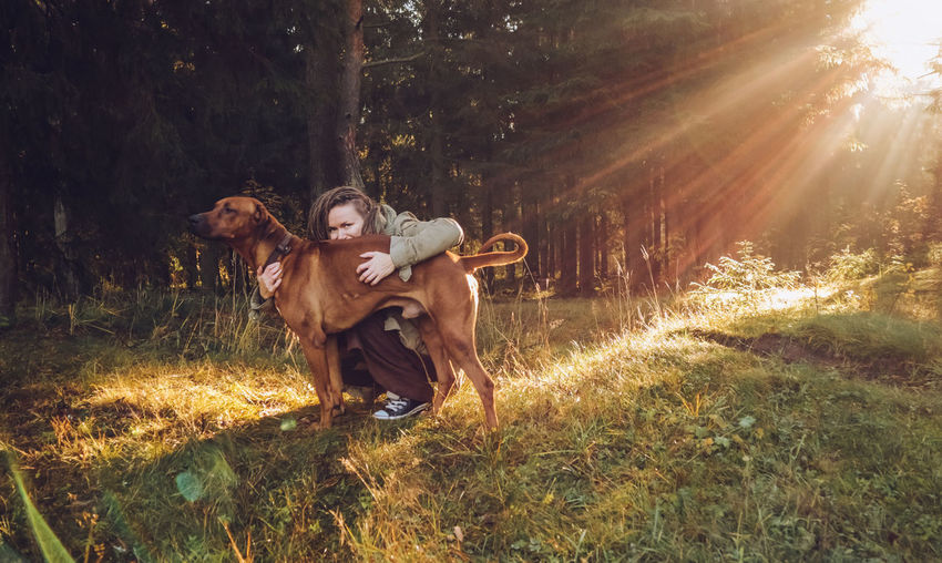 Young smiling woman with dreadlocks in autumn fall forest in the morning sunshine playing with a dog ridgeback Plant Tree Land Mammal Forest Nature Domestic Domestic Animals One Person Real People Sunlight One Animal Pets Grass Field Vertebrate Leisure Activity Outdoors WoodLand Lens Flare Dreadlocks Ridgeback