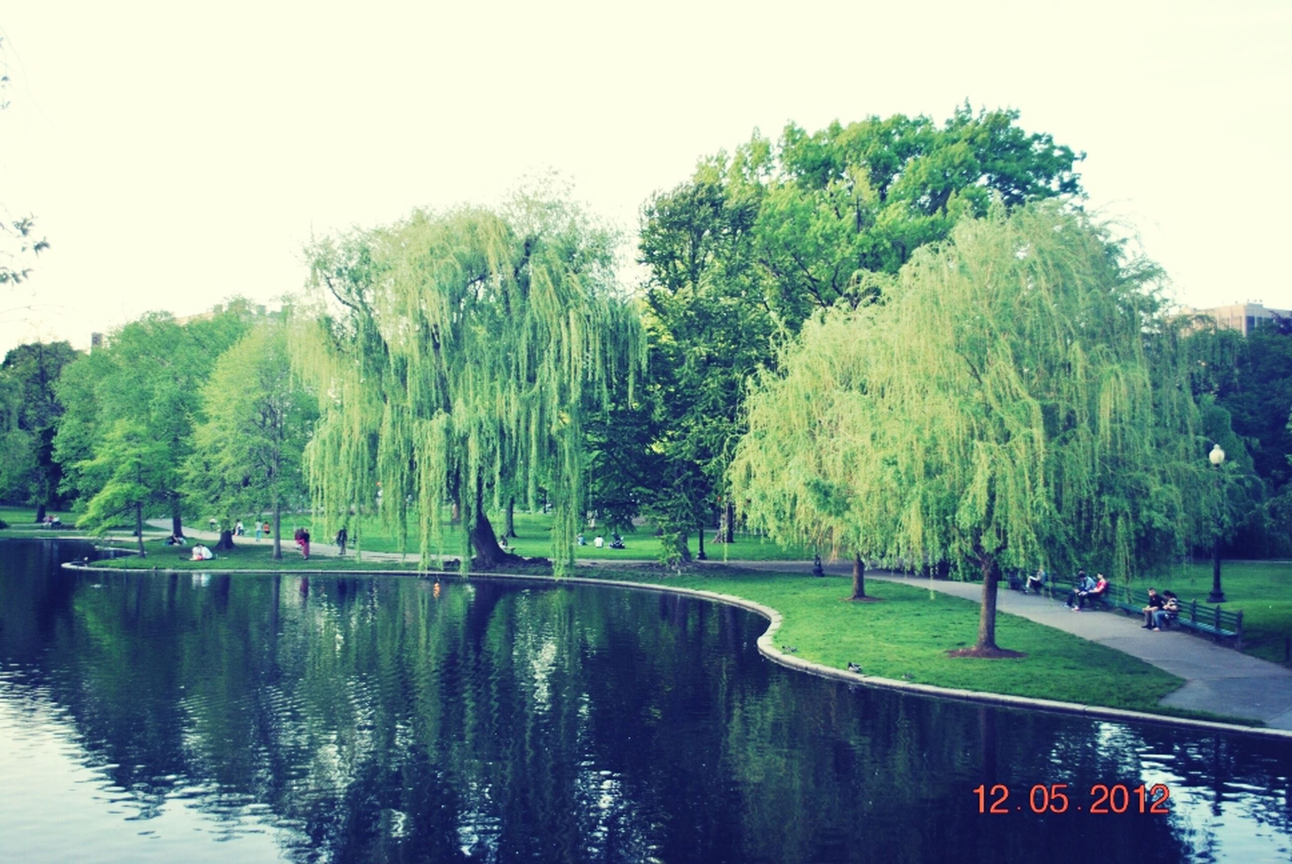 tree, water, lake, waterfront, clear sky, river, green color, tranquility, tranquil scene, nature, growth, transportation, day, incidental people, beauty in nature, scenics, reflection, outdoors, men