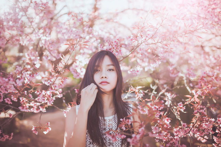 Beautiful asian women with sakura flower in thailand. Beauty Beauty In Nature Branch Cherry Blossom Cherry Tree Day Flower Focus On Foreground Fragility Freshness Growth In Bloom Leisure Activity Lifestyles Nature Park - Man Made Space Pink Color Season  Selective Focus Springtime Standing Sunlight Tree Young Adult Young Women This Is Natural Beauty