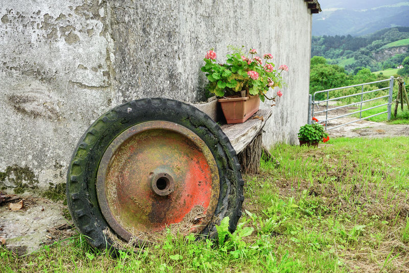 Old rusty flower pot on field