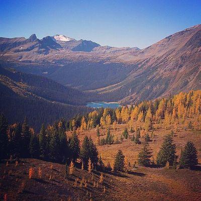 Autumn Colors Nature Landscape