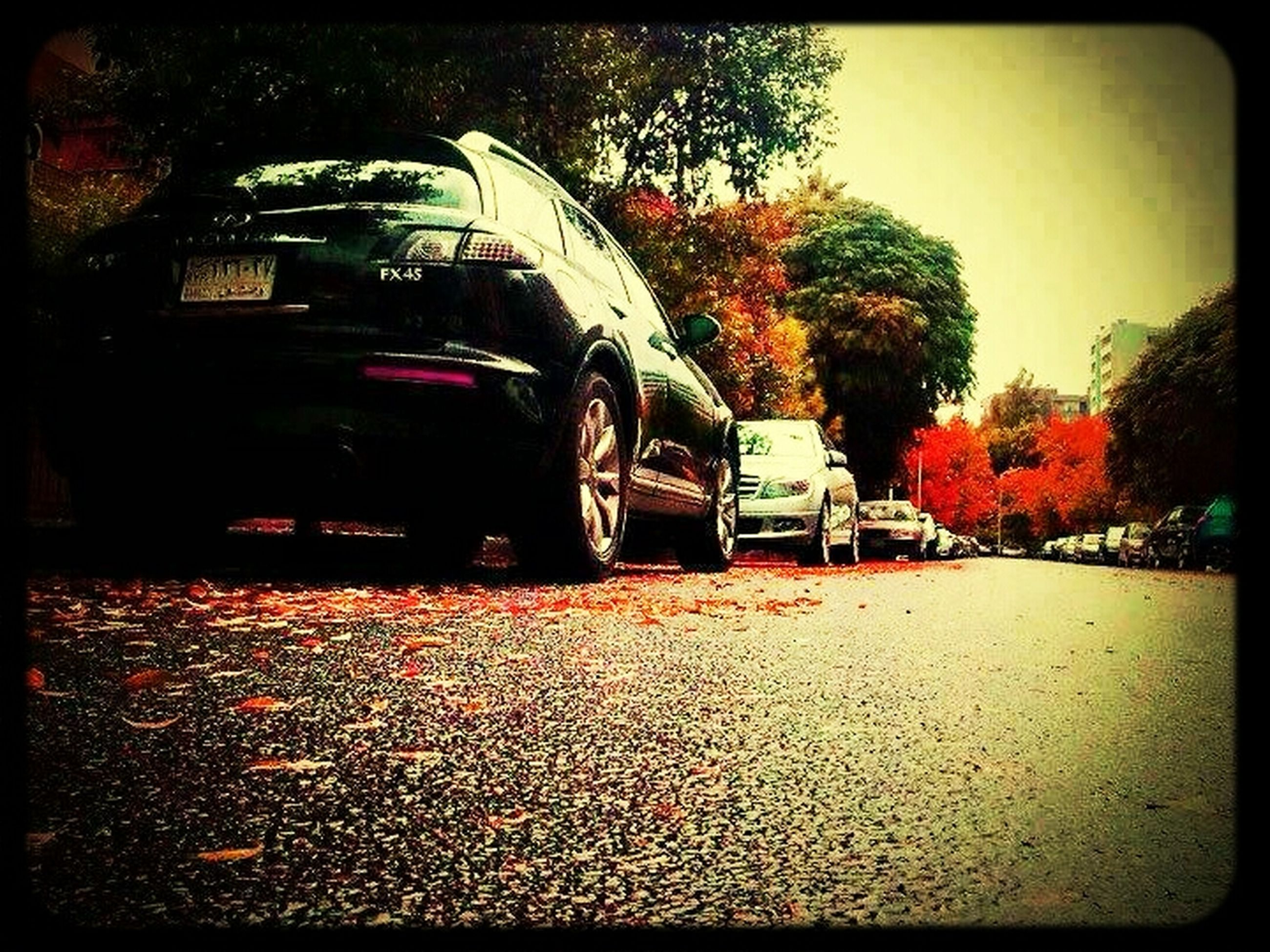 transfer print, auto post production filter, transportation, tree, car, building exterior, land vehicle, mode of transport, street, architecture, built structure, road, city, outdoors, sky, house, travel, incidental people, autumn, parking