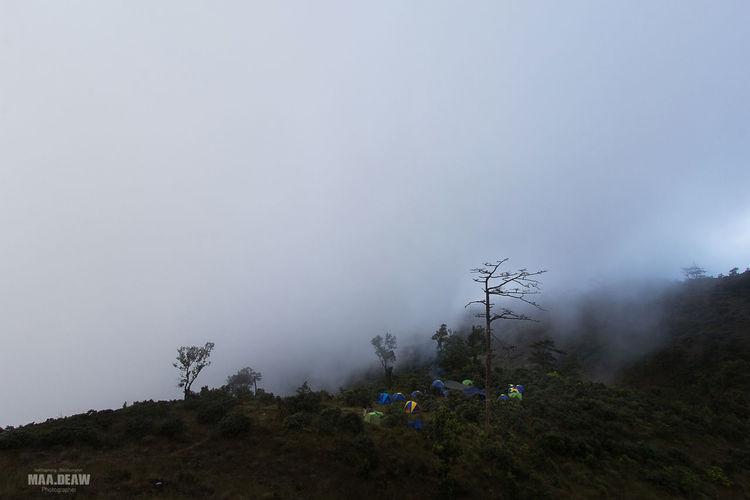 Doi langkanoi Chiangrai Cloud Landscape Nature Outdoors Thailand Thailand_allshots