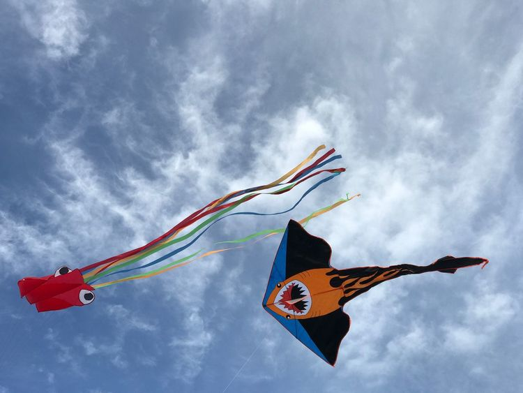 Kites EyeEm Selects Multi Colored Cloud - Sky Sky Flying Wind Low Angle View Motion Kite Outdoors Art And Craft Day Animal Representation Creativity Mid-air No People Representation Environment Nature Kite - Toy Animal