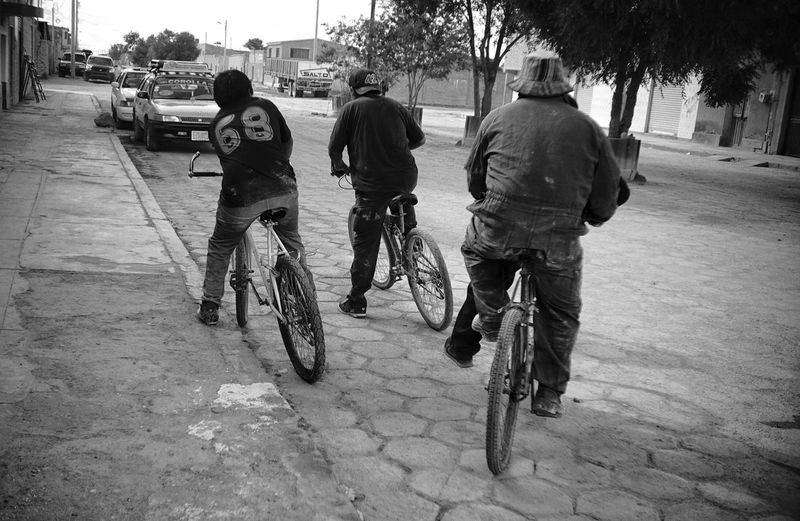 People on bicycle in city
