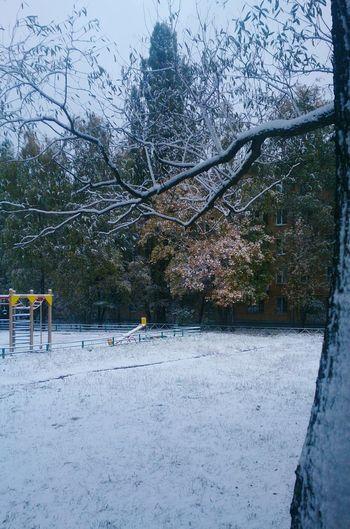 Осенний снег в Москве. пейзаж город снег Urban Landscape Snow