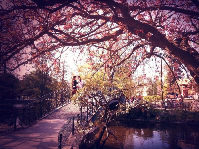 at Jardin botanique du Jardin public