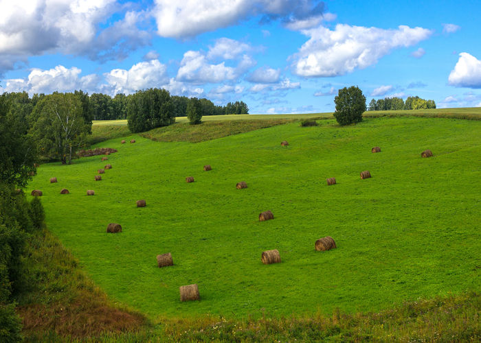 Hay Bale Agriculture Cloud - Sky Day Environment Field Grass Green Color Hay Land Landscape No People Outdoors Rural Scene Siberia Sky Summer Tranquil Scene