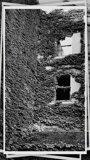 Urbexphotography Urbex_rebels EyeEm Best Shots EyeEm Abandoned Blackandwhite Photography Creepypasta