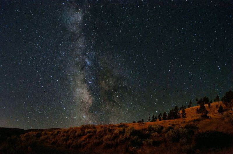 Tranquil Scene Scenics Star - Space Night Tranquility Beauty In Nature Star Field Astronomy Low Angle View Sky Nature Milky Way Infinity Falling Galaxy Idyllic Non-urban Scene Dark Majestic Hill Milkywaygalaxy Milkyway Astrophotography