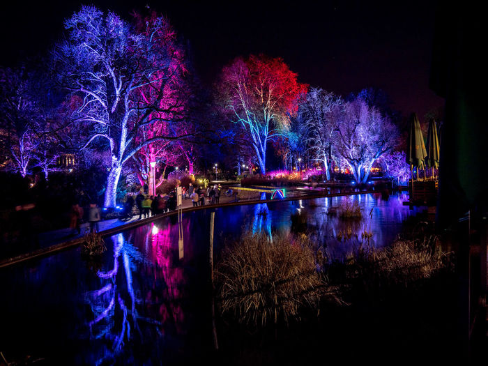 Water Night Illuminated Tree Reflection Plant Celebration Lake Architecture Nature No People Built Structure City Building Exterior Waterfront Event Outdoors Auto Post Production Filter