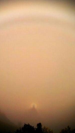 mi sombra en la niebla.. bos dias