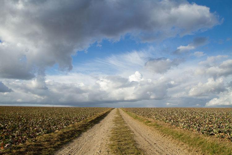 Field path in