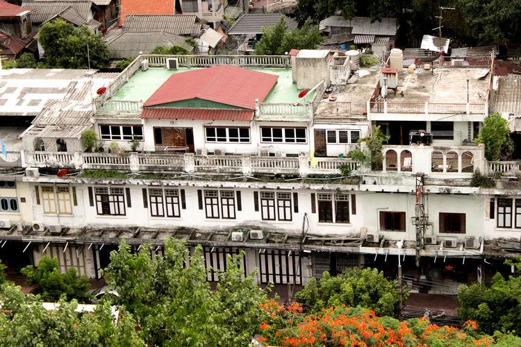 Houses against trees