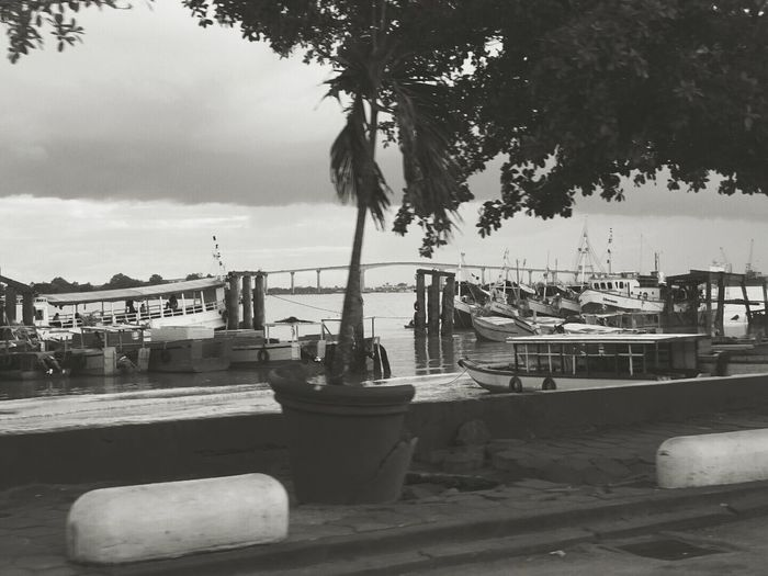 Battle Of The Cities Mode Of Transport Water Sea Harbor Outdoors Summer Transportation Nature Fresh On Eyeem  Black & White Suriname❤ Surinamese Suriname @south-america Welcomeweekly Southamerica Suriname Monochrome Photography Monochrome Photograhy