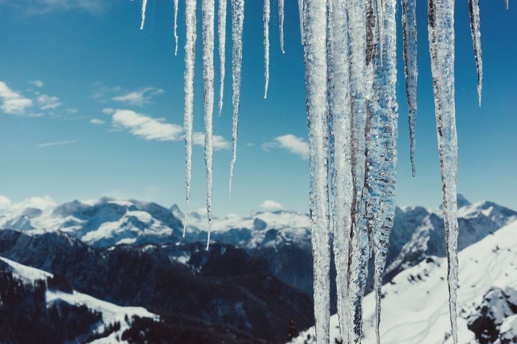 Close-up of icicles by snow covered mountains against sky