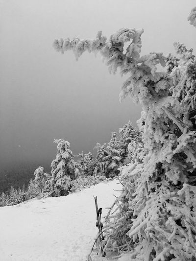 It does not matter if you take color or BW photography it is all white and freezing It's Cold Outside Taking Photos Travel Nature