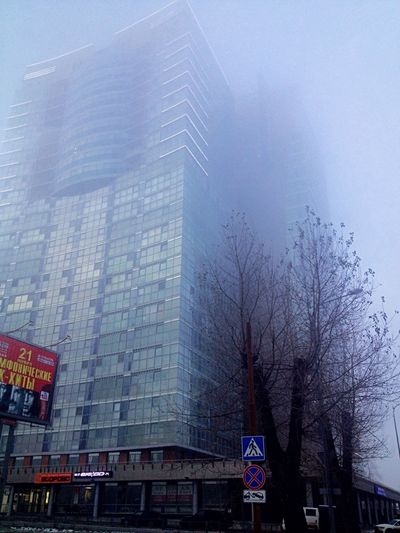 Mist and snow.