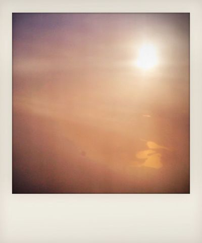 Morgenflug Polaroid
