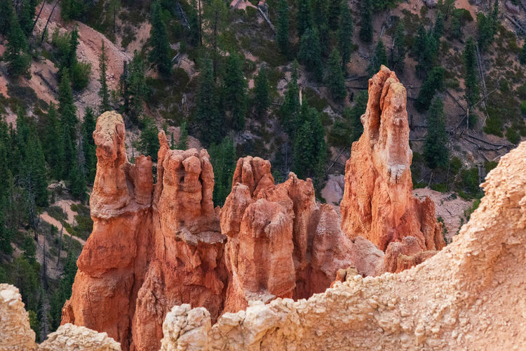 one of the greatest places I ever visited: the breathtaking Bryce Canyon NP Non-urban Scene Scenics - Nature Tranquility Tranquil Scene Outdoors Sunset Bryce Canyon USA Photos Rock Rock - Object Rock Formation Solid Nature Geology Travel Travel Destinations Beauty In Nature Mountain Plant Tree Physical Geography Day Eroded Formation Sandstone