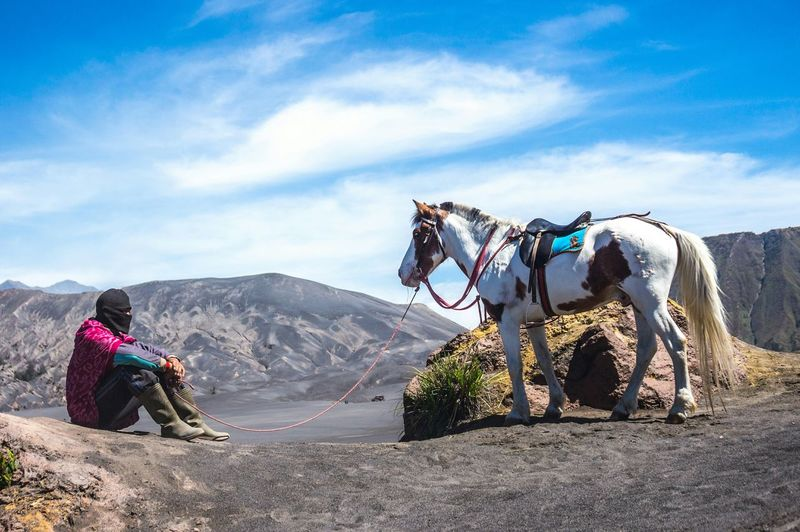 Porter and horse sat at Sea of Sand of Mount Bromo Porter Mount Bromo Horse Horseman Tengger Animal The Traveler - 2015 EyeEm Awards INDONESIA Sitting Tranquility Hidden Gems  Color Of Life Eyeemphoto Two Is Better Than One Lost In The Landscape