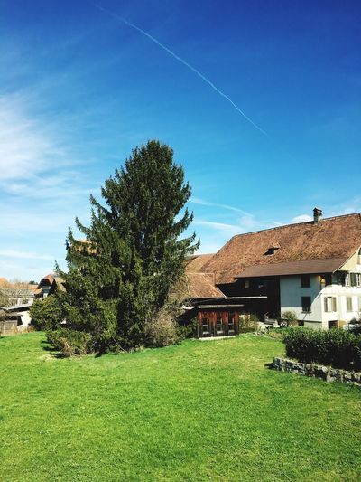Swissgirl Switzerland Wettertanne Building Exterior House Built Structure Architecture Tree Grass Sky No People Outdoors Day Landscape Green Color Nature Country House