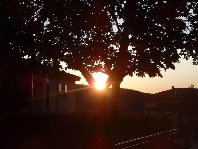 Tramonto Dal Kristal Sunset Nature No People Outdoors Beauty In Nature Sky Tree Sunbeam Sun Close-up Sunsetsky Italia Scenics Monghidoro Appenninotoscoemiliano Appennino Town Paesino Fire Ball Fire Balloon Palla Di Fuoco Sol Sole Calare Night
