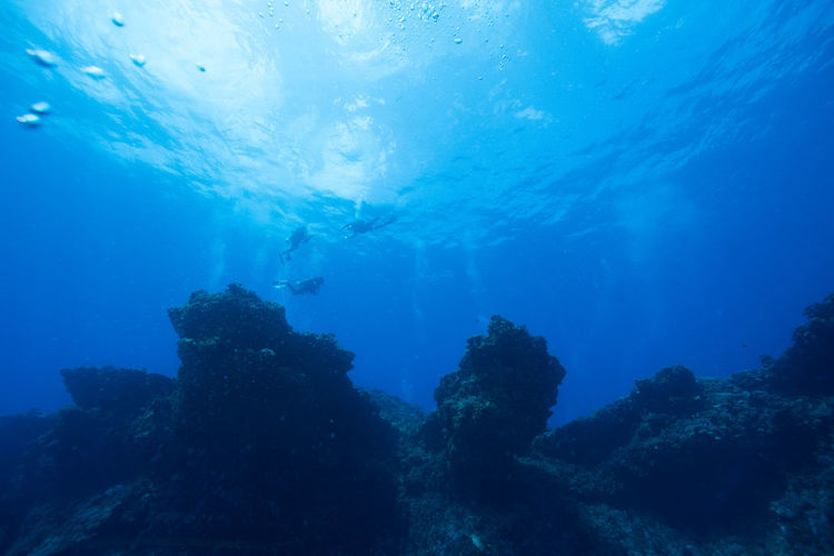 green island, Taiwan Coral Day Freshness Leisure Activity Nature People Scuba Diving Sea Sea Life Swimming Travel UnderSea Underwater Underwater Diving Vacations Water