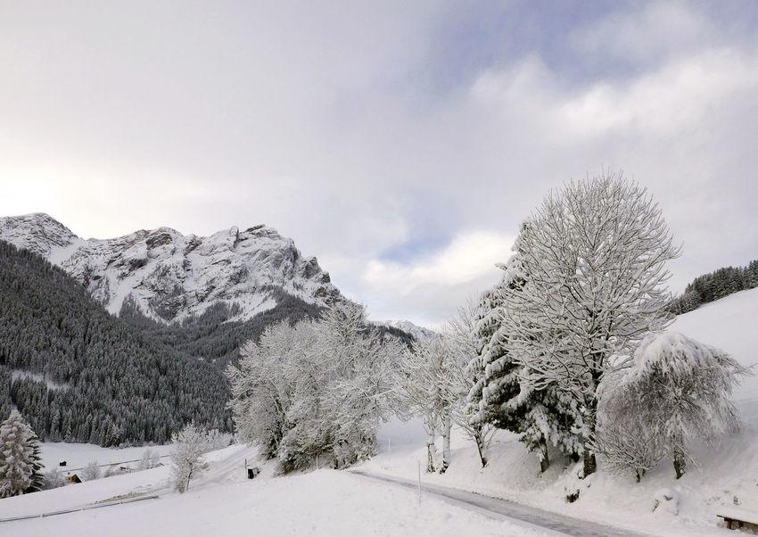Frozen Cold Temperature Landscape Scenics Snow Tranquil Scene Tranquility Val Pusteria Winter