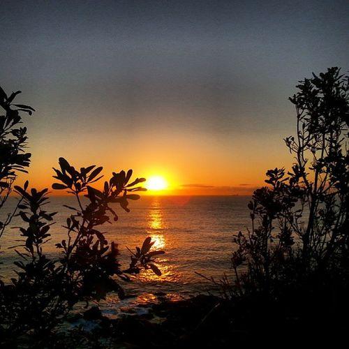 My jetlag and I, having a grand ole time Manly  Sydney Sunrise Meditation gratitude Australia home instagood