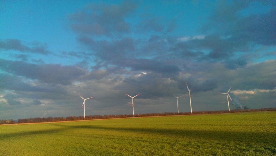 Windpower vs Kohlekraftwerk