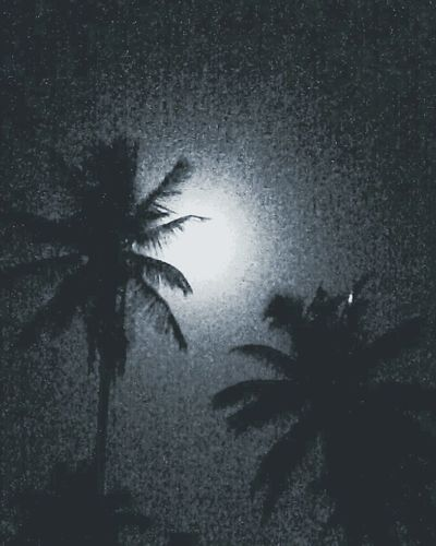 Sky Moonlight Nightphotography