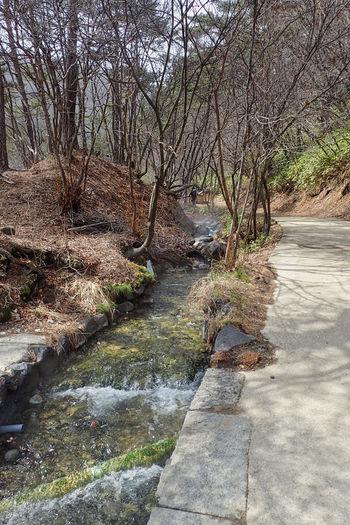 a small river