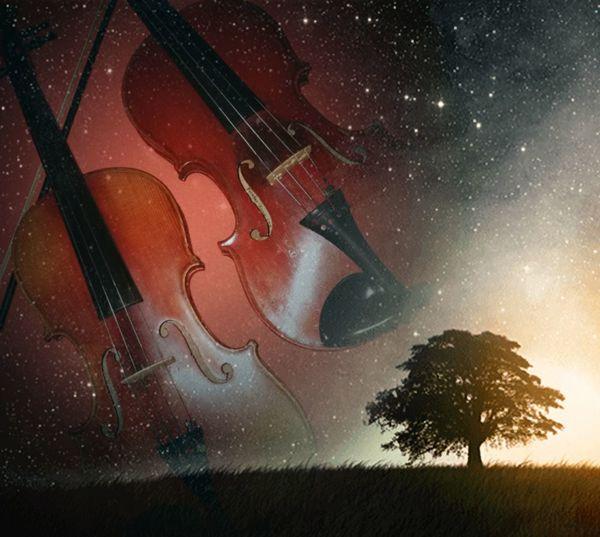 Music Arts Culture And Entertainment Musical Instrument Violin Strings Violin Violin My Love Violine