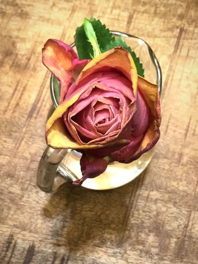 Red Rose Freshness Table Flower Rosé High Angle View Indoors  Plant Flowering Plant Wood - Material Rose - Flower Beauty In Nature Still Life Inflorescence Flower Head
