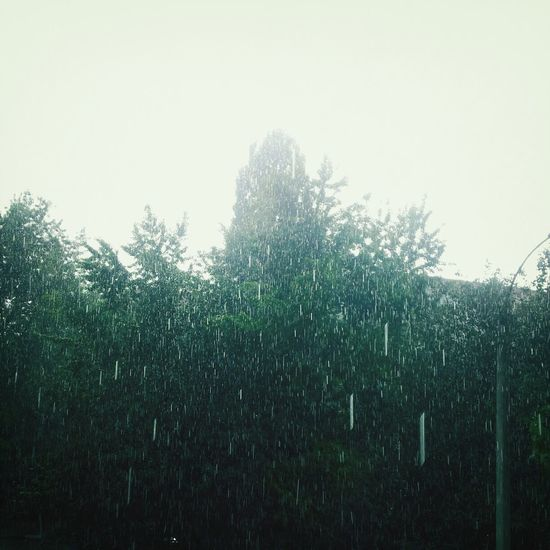 I love the rain ~♥~ Some people feel therain. Others just getwet! Beautiful Rain Evening Sky Nature