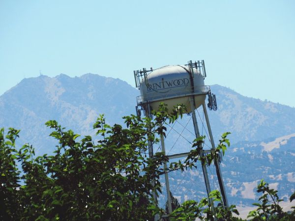 Brentwood Water Tower Mountain Tree Clear Sky Tower Mountain Range International Landmark Scenics Outdoors Sky Day Low Angle View Text The Past The Future First Eyeem Photo