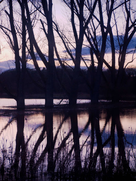 Reflection River Tranquility Sunlight Nature Day Idyllic Weather Beauty In Nature Waterfront Sky Scenics No People Tranquil Scene Outdoors Water Wümme Wümmewiesen Rotenburg An Der Wümme Horizon Over Water Cloud Cloud - Sky Diminishing Perspective Empty Cloudy