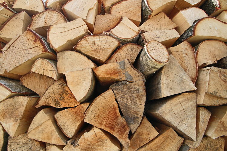 Full frame shot of firewood in forest