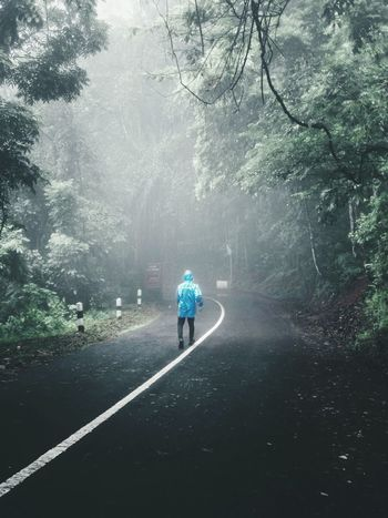 See The Light Folkindonesia Folklore Folkgood Folkgeen Forest Livefolks Livefolksindonesia Livefolk Modernoutdoorsman Green Color Nature Folkportraits Folkcreative Natgeotravel INDONESIA Earth Perspectives On People