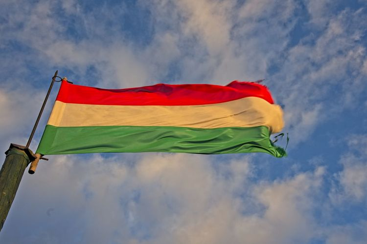 Hungarian flag waving in a wind in evening sun. Sky Cloud - Sky Patriotism Low Angle View Flag Wind Day Waving Outdoors Pride National Icon Hungary Blue Red White Green Color Nature Environment