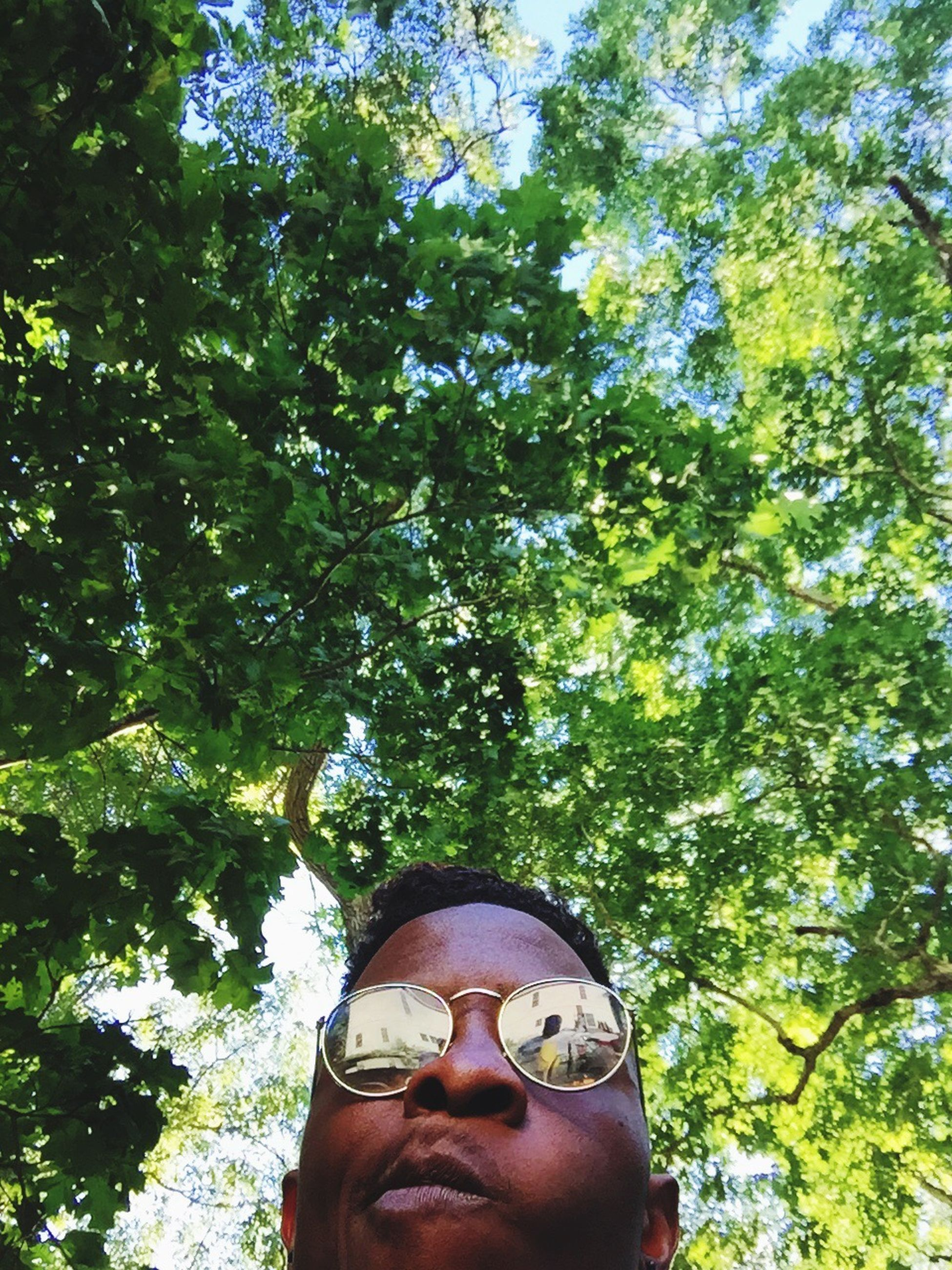 tree, one person, sunglasses, real people, growth, branch, day, attitude, eyeglasses, nature, outdoors, young adult, close-up, people