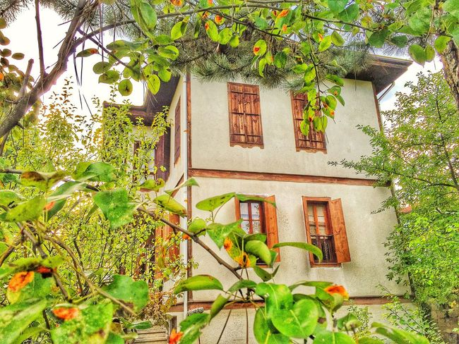 Safranbolu Safranboluevleri Old Buildings Old History Ancient Architecture Check This Out Photography Turkey