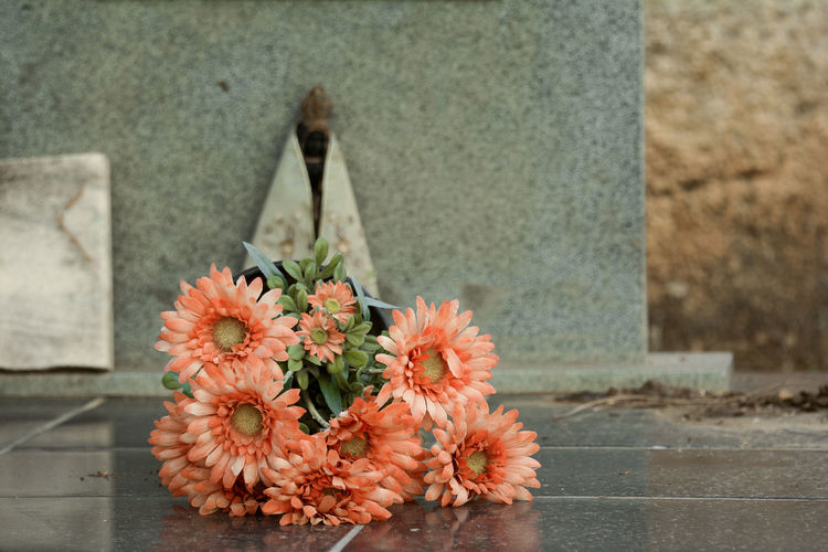 Orange Flowers At Cemetery
