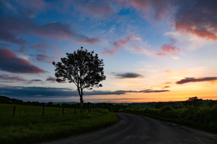 Feeling at home when only halfway there... priceless Sky Cloud - Sky Tree Beauty In Nature Plant Sunset Scenics - Nature Tranquility Landscape Tranquil Scene Field Environment Nature Road Land The Way Forward Growth No People Direction